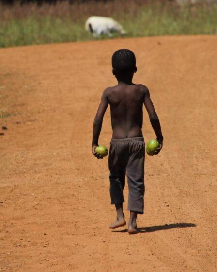 Benin - Djougou