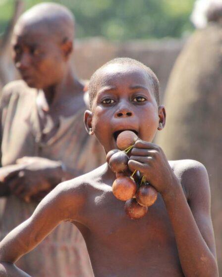 Togo - Boukoumbé & Kara