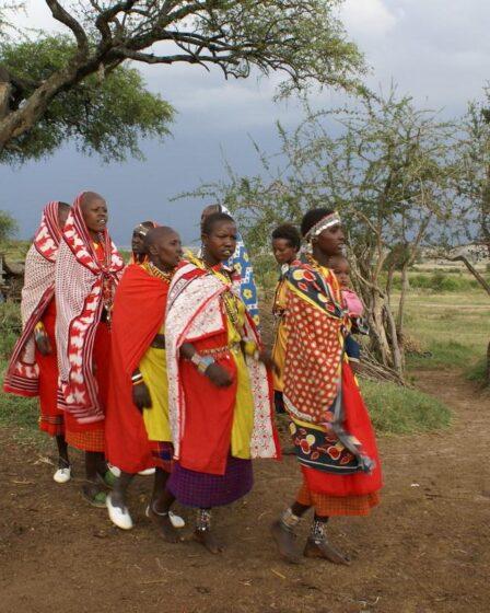 Kenia - Masai Mara (Nationalpark)