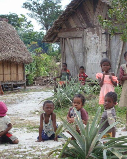 Madagaskar - Masoala (Nationalpark)